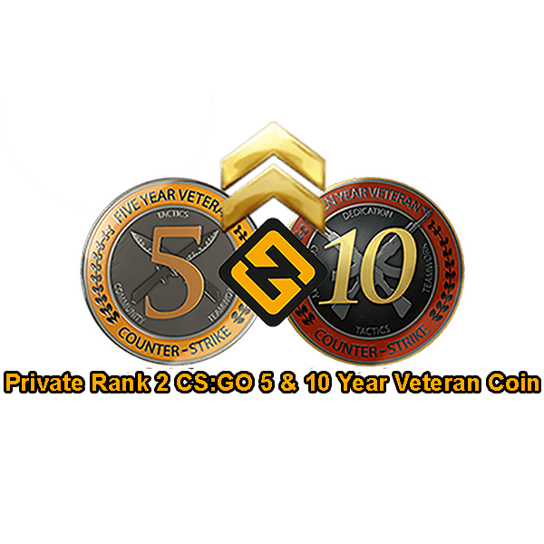 PR2 CSGO 5 & 10 Year Veteran Coin Accounts