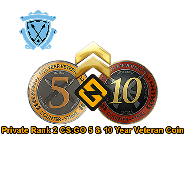 prime PR2 CSGO 5 & 10 Year Veteran Coin Accounts