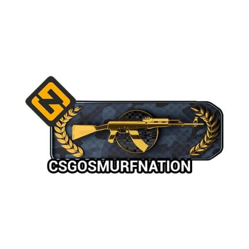 CSGO Master Guardian 2 (MG2) Ranked Account [Instant Delivery]